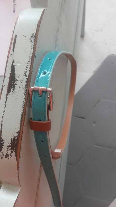 Brown And Mint Belt